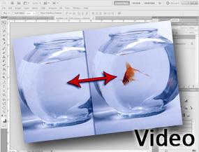 corso_photoshop-completo-adobe-certificato-archibit-centro-corsi-adobe-roma_1